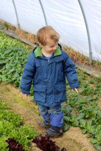 caleb greenhouse