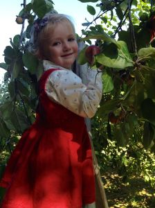 lucy apple picking
