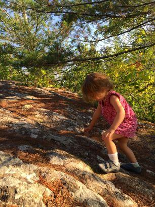 char climbing